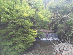 森のこだま 滝を眺めながら過ごす