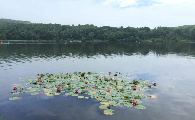 ハート形のバラギ湖と無印良品カンパーニャ嬬恋キャンプ場