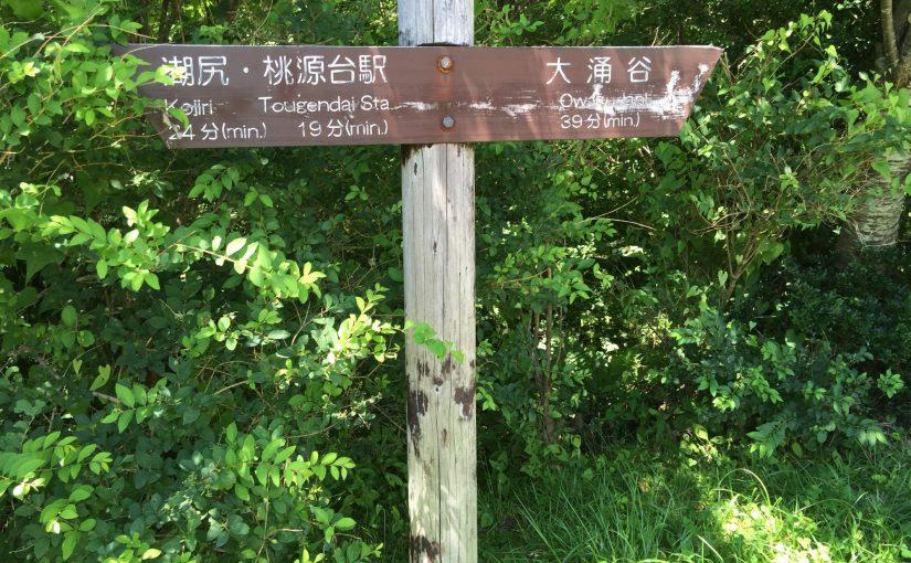 箱根 大涌谷から芦ノ湖まで姥子〜湖尻探勝歩道を歩く。
