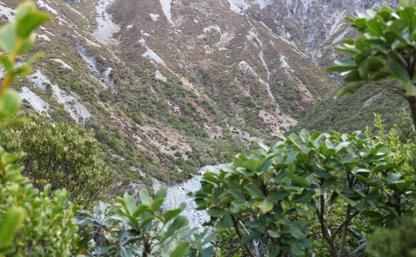 ガバナーズブッシュウォーク マウントクック-ニュージーランド