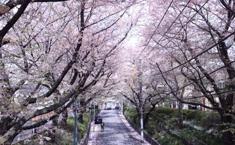 エアリーフォト-山本まりこ先生のカメラレッスンに参加しました。