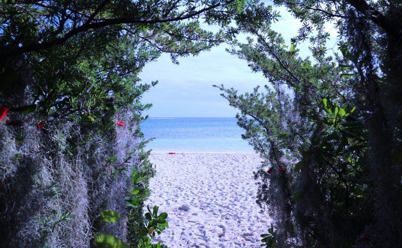ノカンウイ島ツアー-Molo島でシュノーケリングとお散歩-ニューカレドニア旅行記