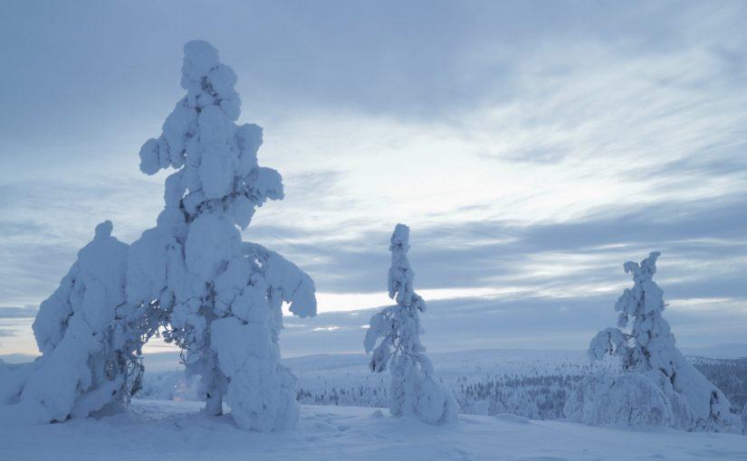 サーリセルカのスキー場で最長2キロのそりコースに挑戦-フィンランド旅行記